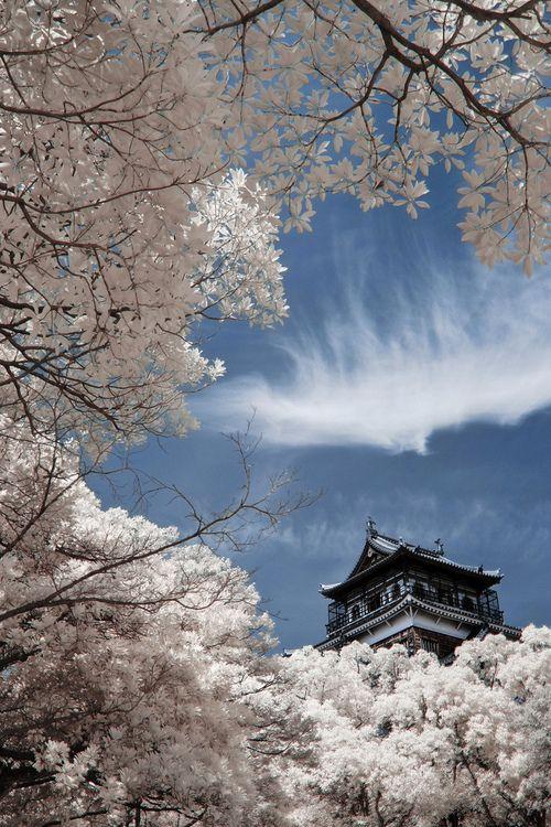 Il Buddhismo in Giappone