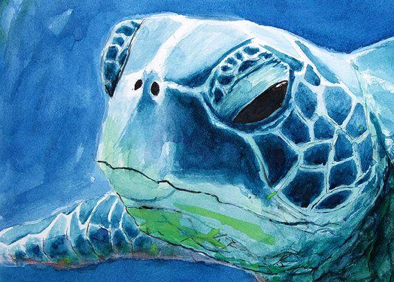 Jataka – La tartaruga sentimentale