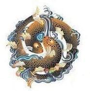 Gli otto Simboli di Buon Auspicio - pesci